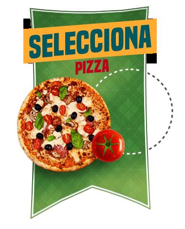 selecciona_1_1